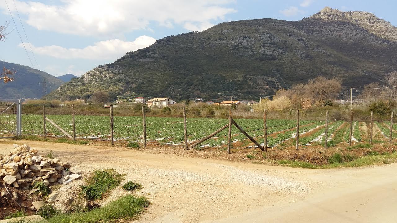 Terreno Edificabile Artigianale in vendita a Fondi, 9999 locali, prezzo € 250.000 | CambioCasa.it