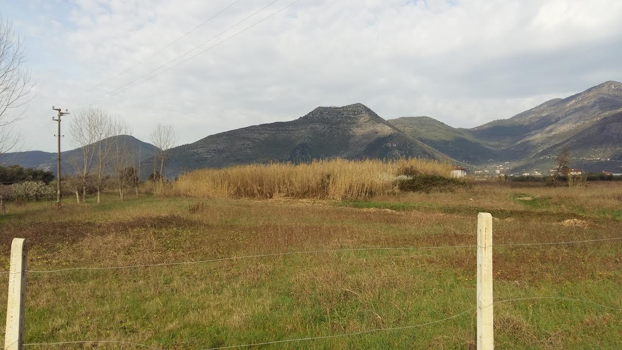 Terreno Agricolo in vendita a Fondi, 9999 locali, prezzo € 50.000 | CambioCasa.it